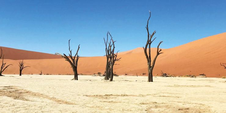 Ontdek de hoogtepunten van Namibië in 18 dagen per mountainbike