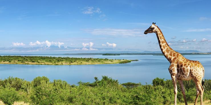 Hoogtepunten van Oeganda per Mountainbike: De parel van Afrika in 14 dagen